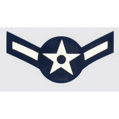 USAF E-2 Airman  Decal