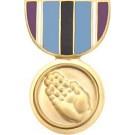 Humanitarian Service Miniature Medal Pin