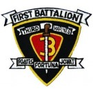 1st Bn 3rd Marine Patch/Small